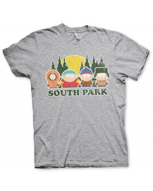 OFFICIAL SOUTH PARK GROUP COLORADO DISTRESSED PRINT GREY T-SHIRT