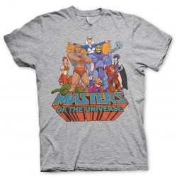 HE-MAN & THE MASTERS OF THE UNIVERSE GROUP DISTRESSED PRINT GREY T-SHIRT